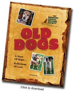 old-dogs-cover