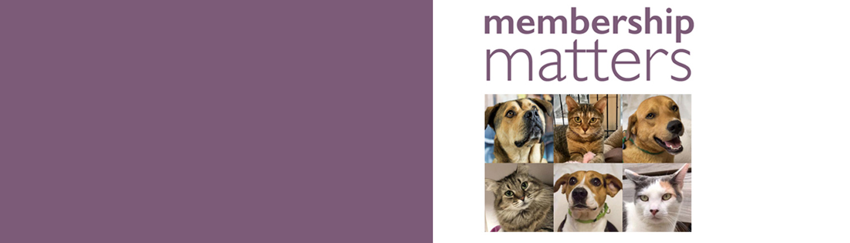 Danbury Animal Welfare Society
