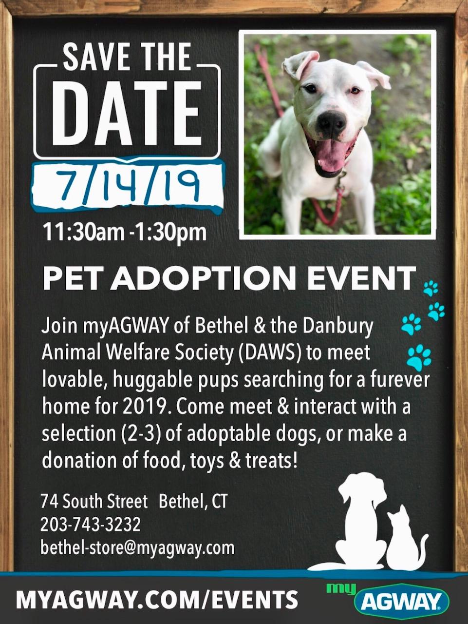 Daws Agway Adoption Event July 14 2019 Danbury Animal Welfare Society